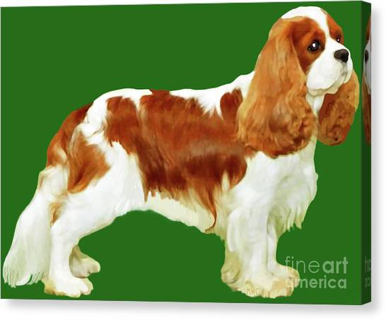 Canvas Print featuring the painting Cavalier King Charles Spaniel by Marian Cates