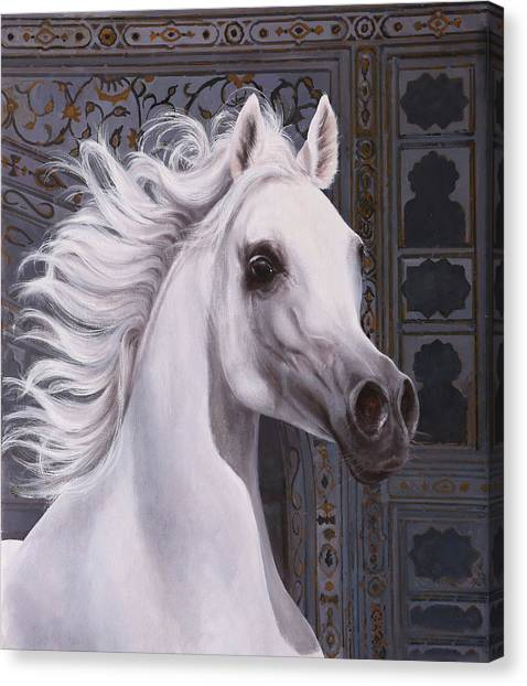 White Horse Canvas Print - Cavallo A Punta by Guido Borelli