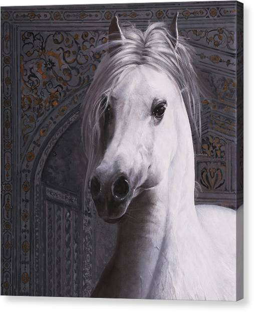 White Horse Canvas Print - Cavallo Col Ciuffo by Guido Borelli