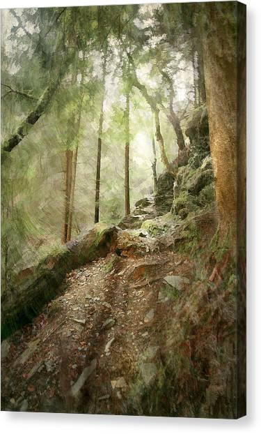 Cavern Walk ..... Canvas Print by Richie Dean