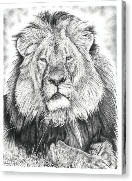 Large Mammals Canvas Print - Cecil The Lion  by Remrov