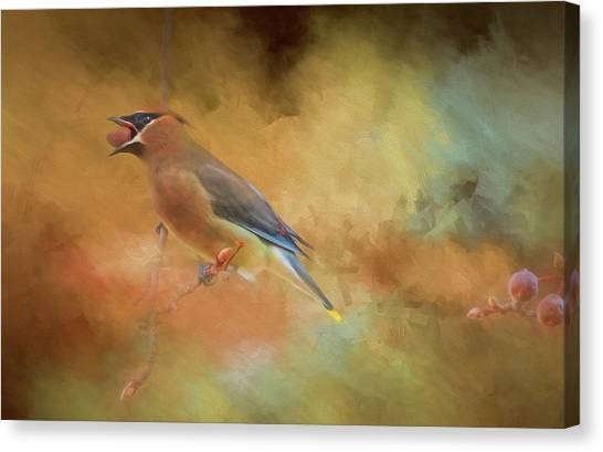 Cedar Waxwing Canvas Print - Cedar Waxwing 2 by Donna Kennedy