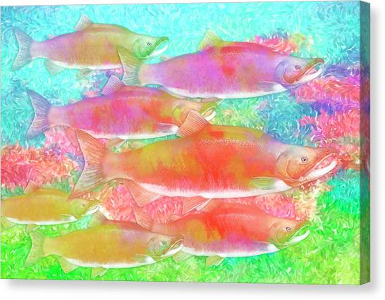 Celebrating Salmon Canvas Print by Darryl Luscombe