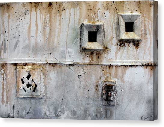 Cell Window Canvas Print by Ralph Levesque