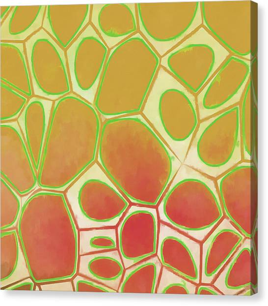 Red Canvas Print - Cells Abstract Five by Edward Fielding