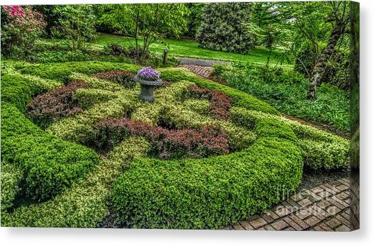Celtic Topiary At Frelinghuysen Arboretum Canvas Print