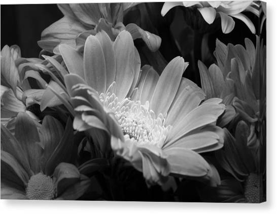 Center Stage Canvas Print
