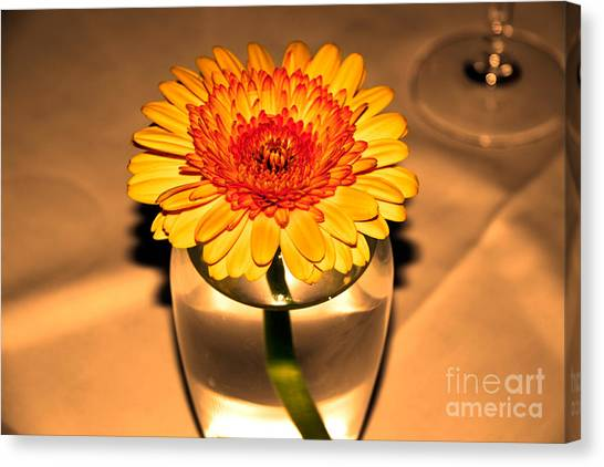 Centerpiece Canvas Print by Wendy Mogul