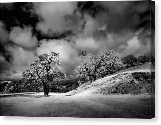 Central California Ranch Canvas Print