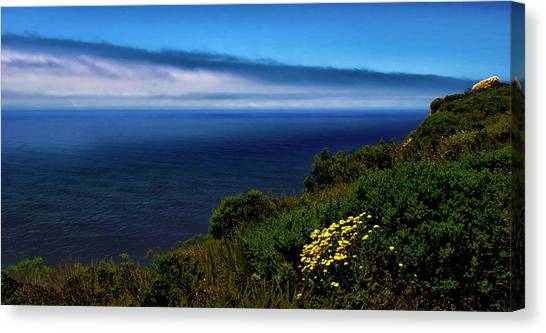 Central Coast Beach 3 Canvas Print