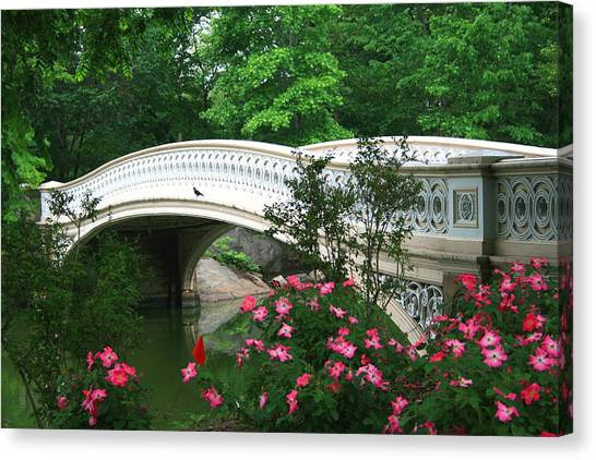 Central Park Bow Bridge In Spring Canvas Print