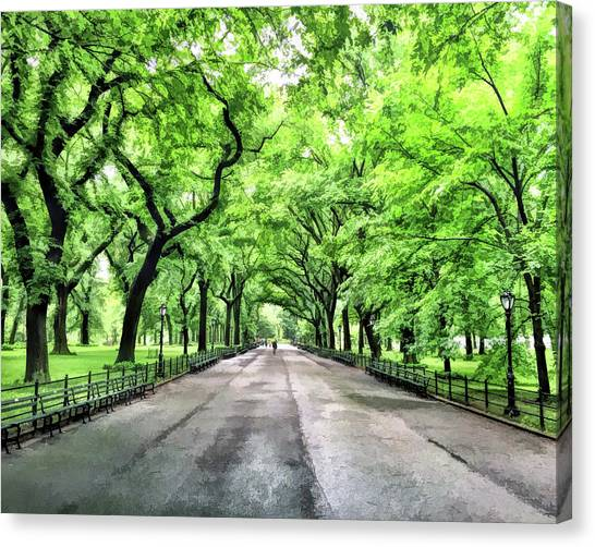 Central Park Mall Canvas Print