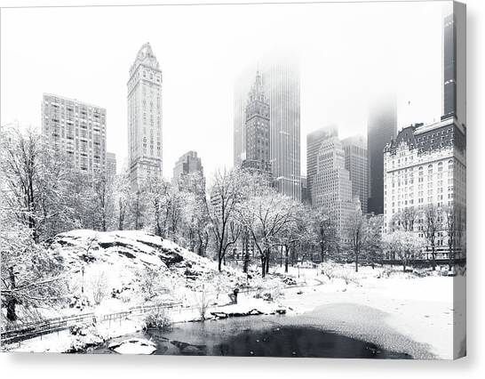 Winter Storm Canvas Print - Central Park by Mihai Andritoiu