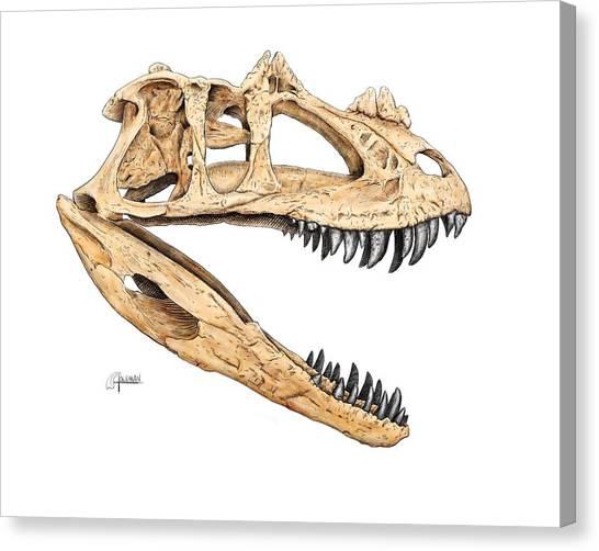 Ceratosaur Skull Canvas Print