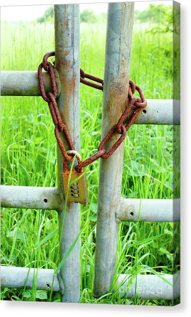 Chain Link Fence Canvas Print - Chain On A Gate by Tom Gowanlock