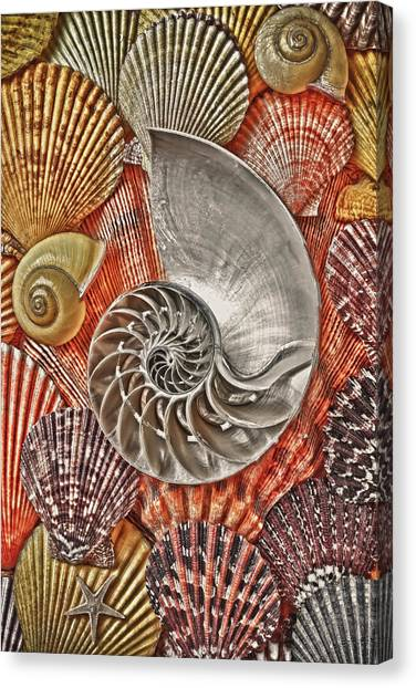 Surrealistic Canvas Print - Chambered Nautilus Shell Abstract by Garry Gay