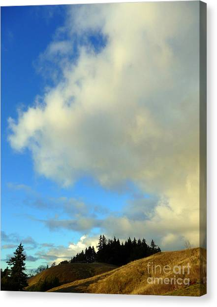 Change In The Air Canvas Print by JoAnn SkyWatcher