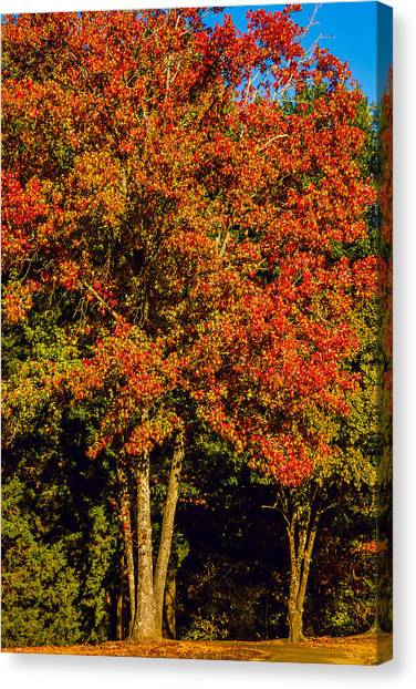 Changing Colors Of Autumn Canvas Print by Barry Jones