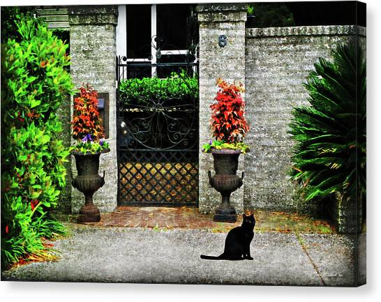 Charleston Cat Canvas Print