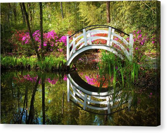 Charleston Sc Magnolia Plantation Spring Blooming Azalea Flowers Garden Canvas Print