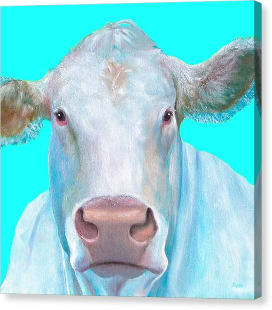 Country Kitchen Decor Canvas Print - Charolais Cow Painting On Blue Background by Jan Matson