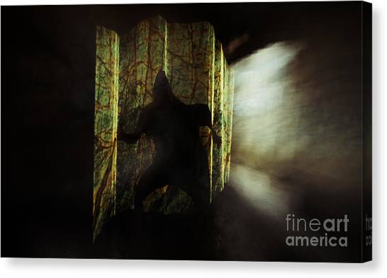 Chasing Shadows Canvas Print