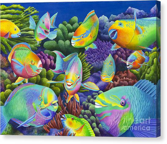 Colourful Fish Canvas Print - Send In The Clowns by Carolyn Steele