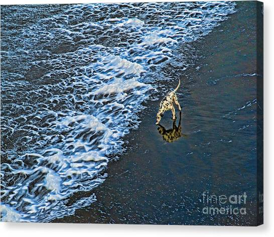 Chasing Waves Canvas Print