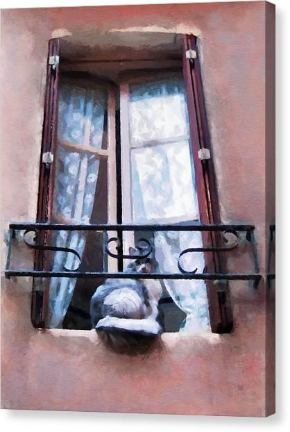 Chat Bleu Dans La Fenetre Rose Canvas Print