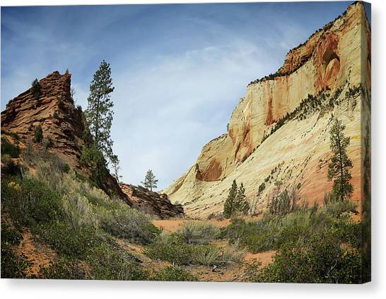 Checkerboard Mesa Canvas Print