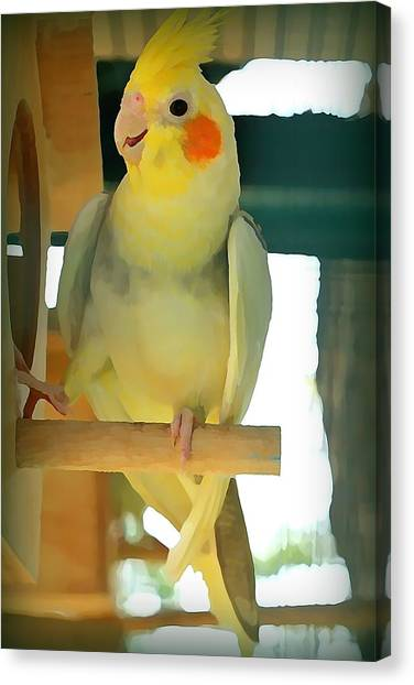 Canvas Print - Cheerful Cockatiel by Raven Hannah