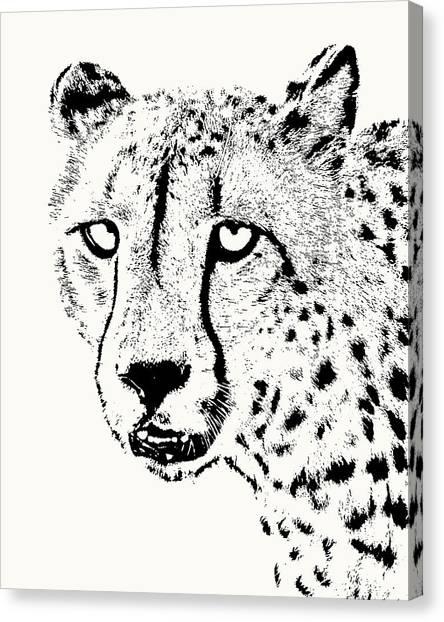 Cheetah Close-up Canvas Print