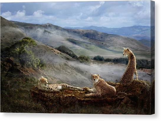 Cheetah Ridge Canvas Print
