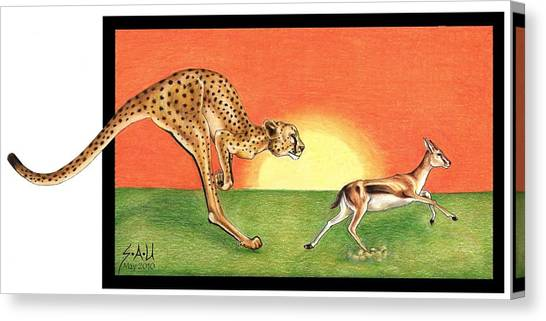 Cheetahroo On The Hunt Canvas Print