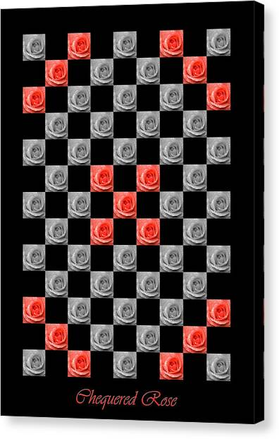 Chequered Rose Canvas Print
