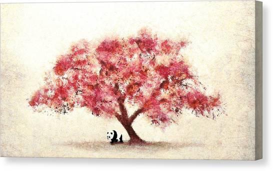 Cherry Blossom And Panda Canvas Print