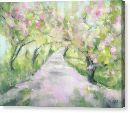 Cherry Blossom Bridle Path Central Park Canvas Print