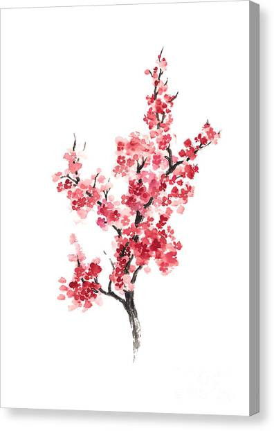 Watercolor Canvas Print - Cherry Blossom Japanese Flowers Poster by Joanna Szmerdt