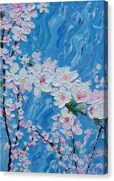 Cherry Blossoms 1 Canvas Print by Timothy Clayton