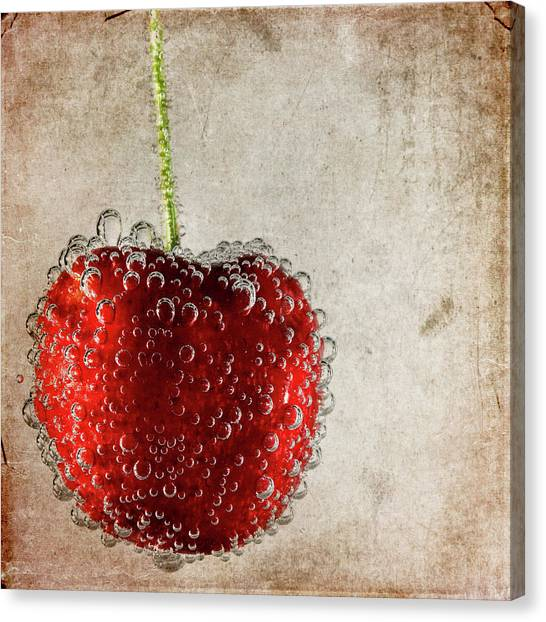 Cherry Fizz Canvas Print