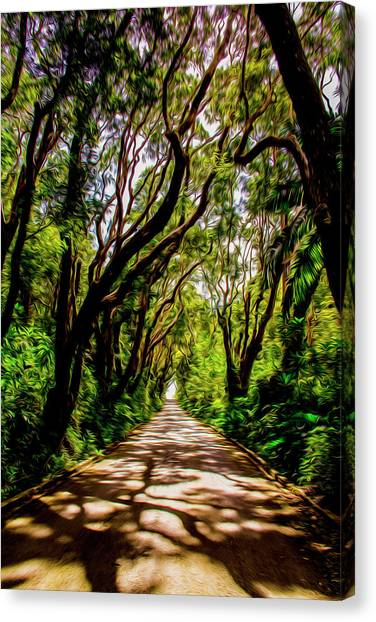 Cherry Tree Hill Canvas Print
