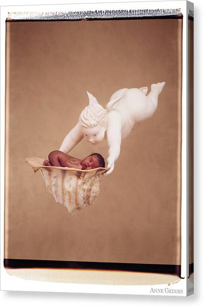 Angel Canvas Print - Cherub Holding Dominique by Anne Geddes