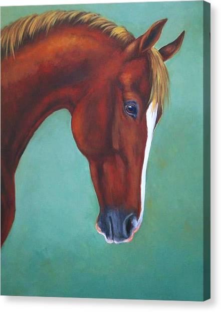 Chestnut Horse Canvas Print by Oksana Zotkina