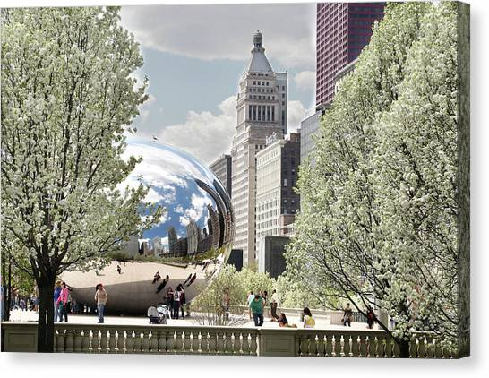 Cloudgate Canvas Print - Chicago Bean With Pear Trees by Abhi Ganju