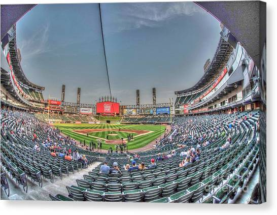 Chicago White Sox Canvas Print - Chicago White Sox by David Bearden