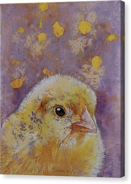 Chickens Canvas Print - Chick by Michael Creese