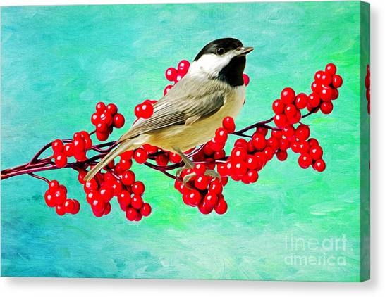 Chickadees Canvas Print - Chickadee And Winterberry by Laura D Young
