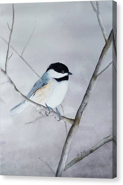 Chickadee II Canvas Print