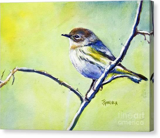 Chickadee Canvas Print by Joyce A Guariglia