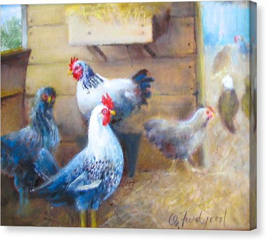 Chickens All Cooped Up Canvas Print